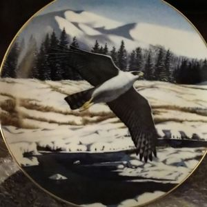 Vintage Hamilton Collection Goshawk Plate